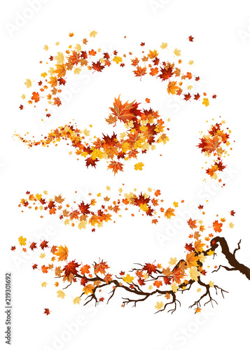 Poster Branch and leaves decor
