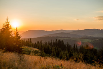 landscape mountains in europe, nature carpathian in the evening in summer © Iarygin Andrii