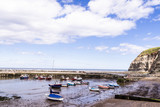 Staithes, North Yorkshire, UK.  A view of Staithes harbour and the Penny Nab headland. - 219324400