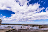 Staithes, North Yorkshire, UK.  A view of Staithes harbour. - 219324455