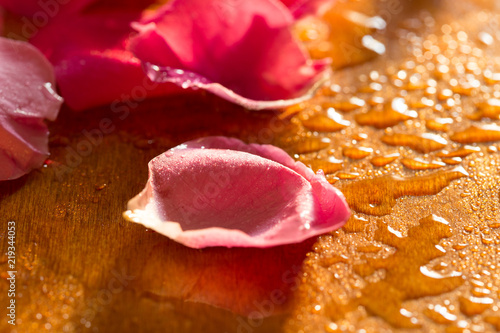 Foto Murales Beautiful gold photograph of rose petals against the background of drops of water during sunset