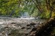 Dosewallips river in Washington, USA