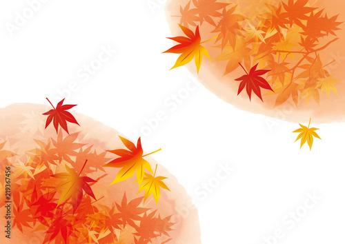 滲み 斜め 紅葉