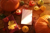 Autumn mockup.empty  notebook with pumpkins, book,apples, yellow maple leaves on a brown wooden table in bright sunlight. top view, copy space. Autumn season. Autumn harvest - 219368893