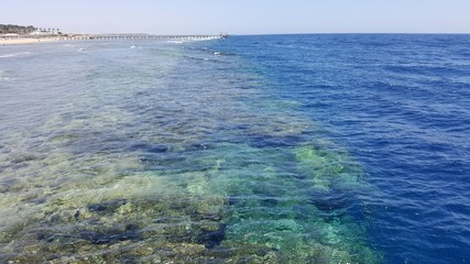 Egipt Sharm el sheikh  rafa koralowa