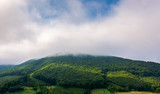 cloud above the forested hill. beautiful countryside scenery - 219387600