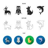 Donkey, owl, kangaroo, shark.Animal set collection icons in cartoon style vector symbol stock illustration web.