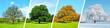 Leinwanddruck Bild - Vier Jahreszeiten - Baum Panorama