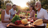 Family having barbecue party in backyard - 219436483