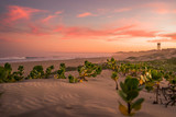 sunset at Saint-Francis Bay, beach, South Africa