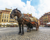 Warsaw Old Town Market Square with a Beautiful Horse and A Decorate Carriage