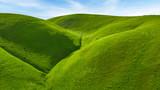 Green Hills - 219505249