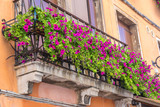 houses with flowers on the windows in venice