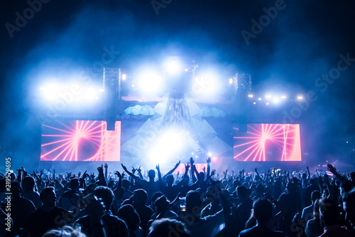 Crowd at electronic music festival