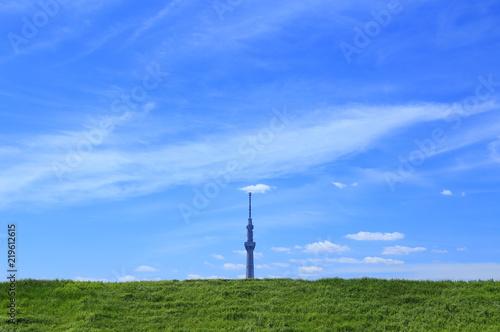 Blue sky with Tokyo Skytree