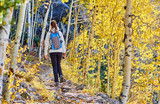 Tourist hiking in aspen grove at autumn - 219627269