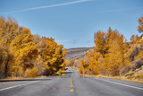 Highway at autumn in Colorado, USA. - 219628402