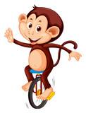 A monkey riding unicycle - 219635208