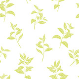 Tea plant graphic color seamless pattern background sketch illustration vector - 219638884