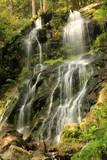 Zweribach-Wasserfall - 219671019