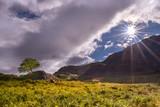 Herbst im Snowdonia NP
