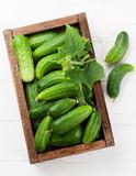 Fresh garden cucumbers - 219693064