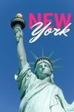 Statue de la liberté - New York - 219696852