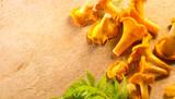 Fresh wild chanterelles mushrooms closeup on rustic background. Organic chanterelle background on a table, closeup - 219716211