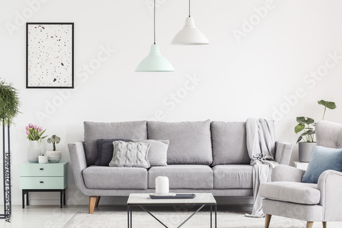Poster above cabinet with plants next to grey settee in white flat interior with armchair. Real photo © Photographee.eu
