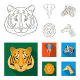 Tiger, lion, elephant, zebra, Realistic animals set collection icons in outline,flat style vector symbol stock illustration web.