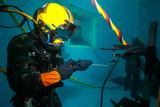 diving - 219745414