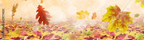 Leinwanddruck Bild Herbst 176