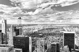View of Central Park in Manhattan from the skyscraper's observation deck. New York. - 219776465