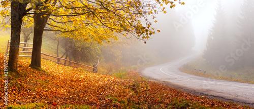 Autumn road - 219787413