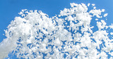 Foam against the blue sky as an abstract background - 219894482