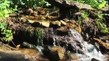mossy stream in mountains - 219908665