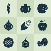 Fruit Icons Set  Figs Kiwifruit Carrot And Other Cauliflower  Elements   Illustration Fruit Icons Sticker