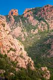 Vertical photo of Calanques de Piana - 219922481
