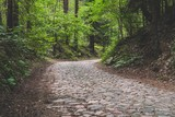 Old cobblestone road and corner in deep forest - 219975641