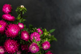 Bouquet of autumn flowers asters on dark grunge background - 219985212