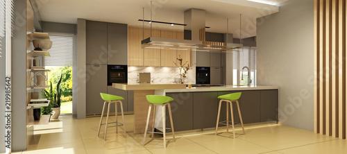 Modern kitchen interior  - 219985642
