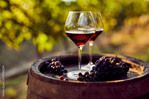 Two glasses of red wine in the vineyard - 219986204