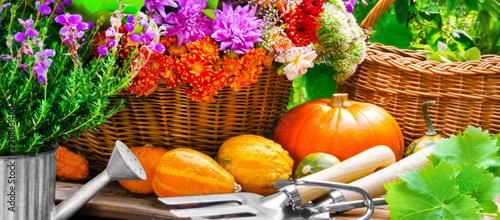 Leinwanddruck Bild Autumn  Garden  -  Flowers and pumpkins