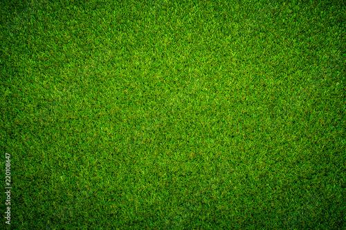 Green grass background Keyword here - 220108647