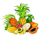 exotic fruits pandan banana avocado coconut papaya pineapple, Pitahaya, star carambola.  illustration - 220130225