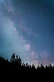 Milchstraße und schwarze Baum-Silhouetten, Nachtaufnahme  - 220131094