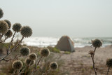 Touristic tent on beah at Azov sea, Ukraine. Stormy cloudy weather. Selective focus. - 220133866
