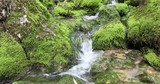 Beautiful mossy stones with stream. - 220138040