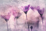 Artistic grunge textured pink red colored flowers background. - 220148246