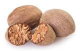 Nutmeg on white background - 220159678